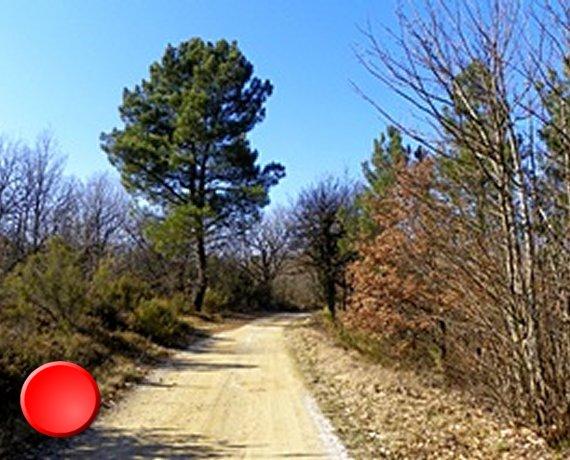 Sentier pédestre à Peyrilles dans le Lot