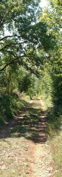 Sentier de randonnée à Assier (Table Roux)