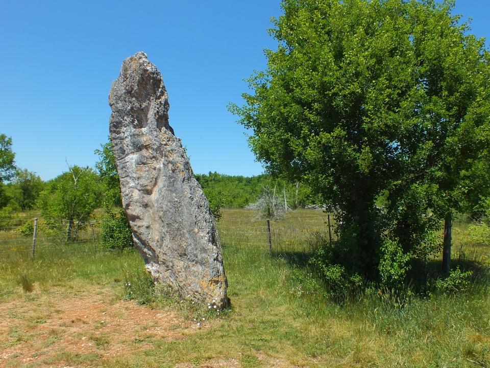 Le menhir de Bélinac à Livernon dans le Lot