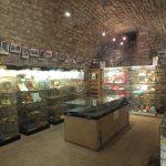 Lot. Musées & Expositions