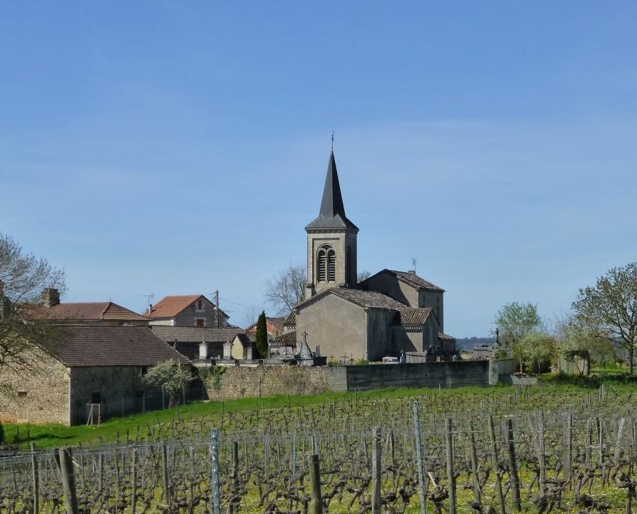 Circuits randonnée pédestre - Albas - Le circuit de Cénac-Sauzet - 17km (église Saint-Martin de Cénac à Albas)