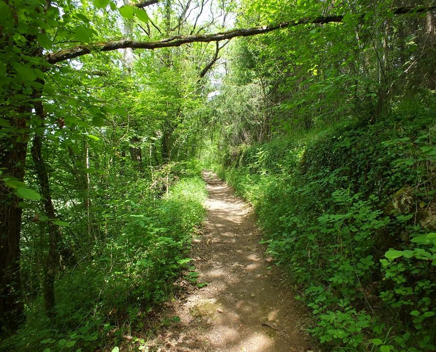 Circuits randonnée pédestre - Lunan - De Lunan à Capdenac le Haut - 9km (le sentier du Goutal à Capdenac)