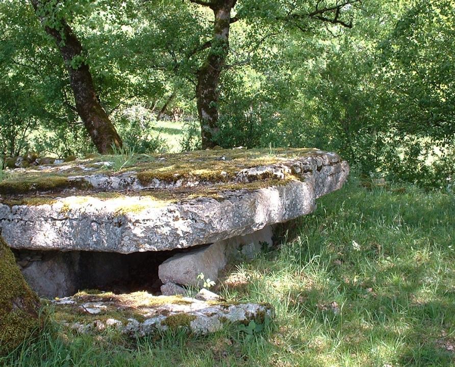 Dolmens & menhirs - Assier - Dolmen du Bois des Bœufs - -