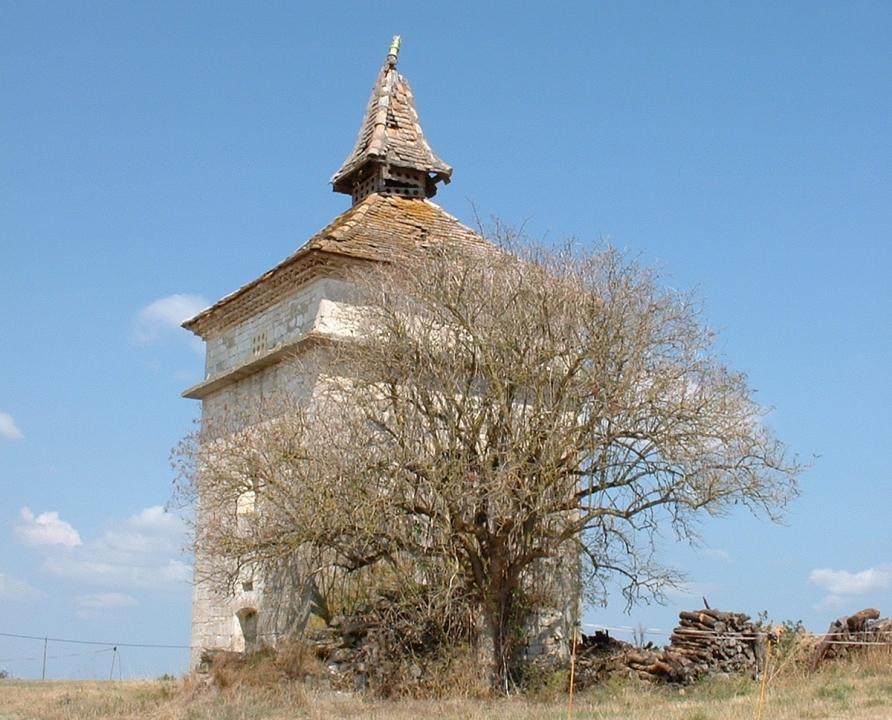 Pigeonniers & Colombiers - Belfort-du-Quercy - Vieux pigeonnier (Benfoulet) -
