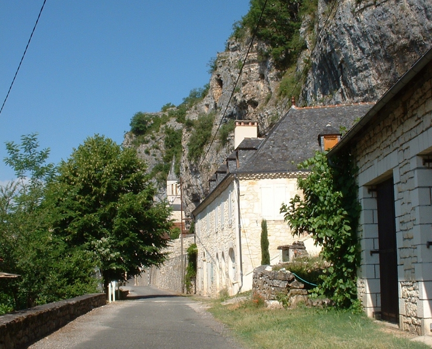 Circuits randonnée pédestre - Martel - Circuit Découverte des Richesses de la Flore du Causse - 12km (Gluges)