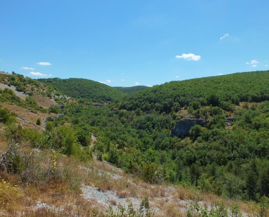 Circuits randonnée pédestre - Rocamadour - Circuit de Rocamadour - 17km (Point de vue sur la vallée de l'Ouysse)
