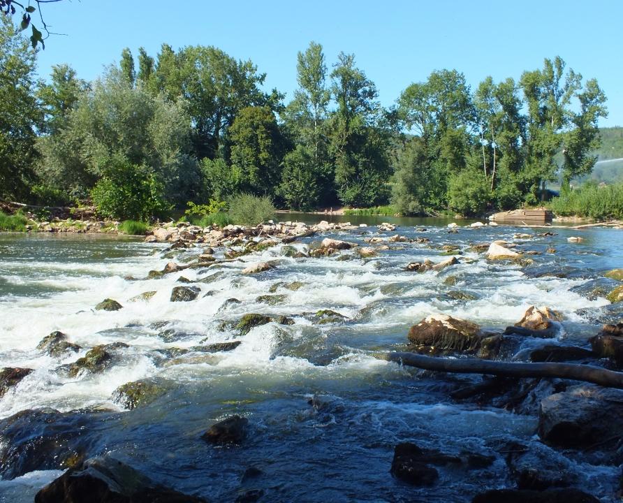 Rivières & Ruisseaux - Crégols - Le Lot (bourg) -