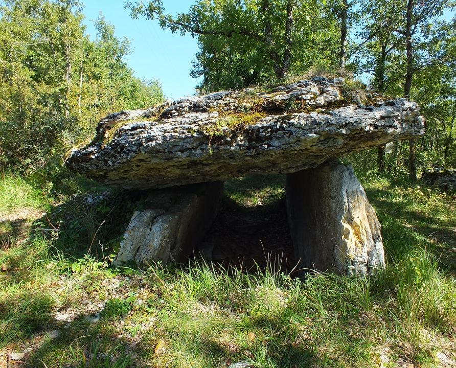 Dolmens & menhirs - Béduer - Dolmen de Martignes -