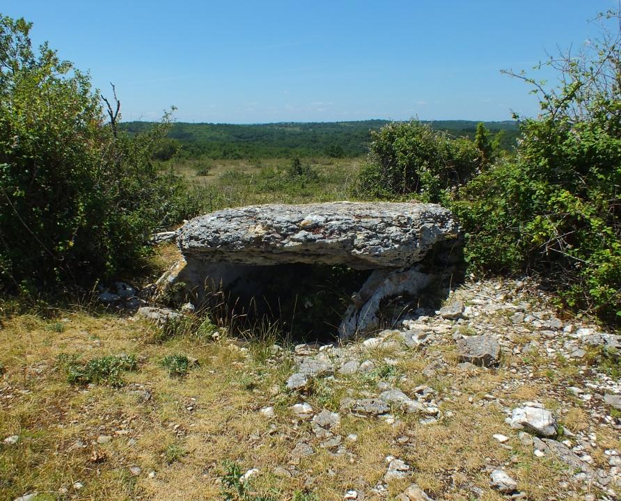 Dolmens & menhirs - Gréalou - Dolmen du Pech Laglayre 1 -