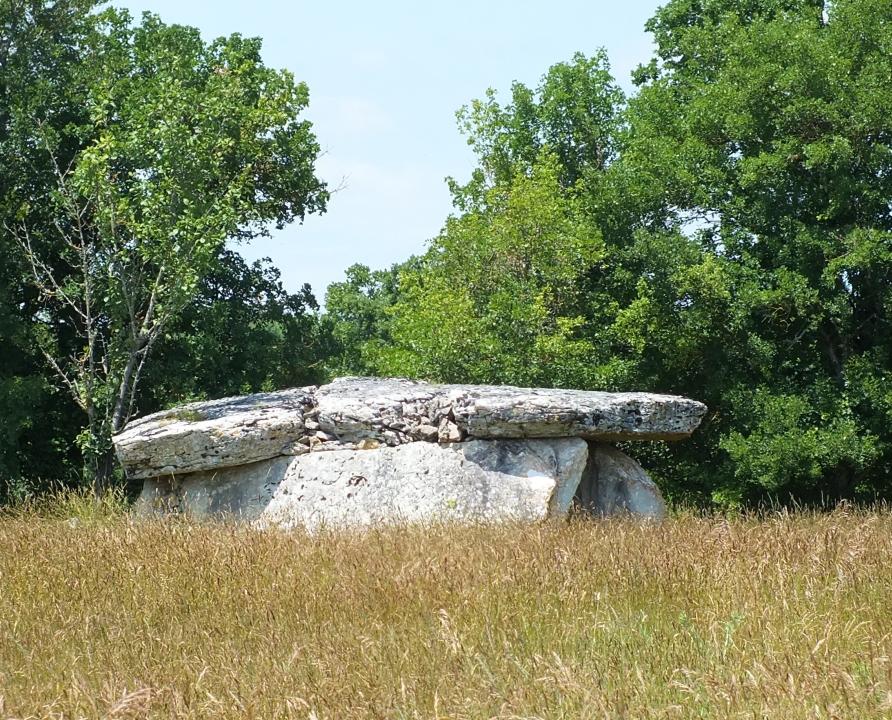 Dolmens & menhirs - Grèzes - Dolmen du Coustalou -