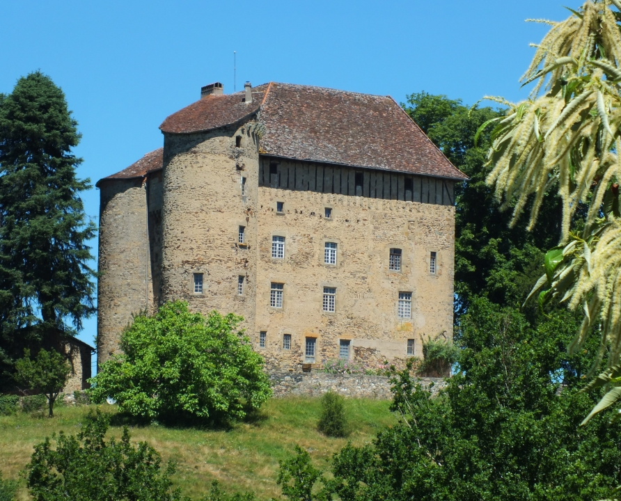 Châteaux & Fortifications - Linac - Château de Puy-Launay -