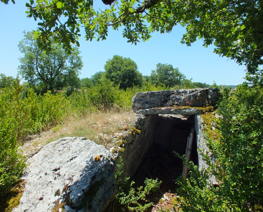 Dolmens & menhirs - Saint-Chels - Dolmen du Mas de Pezet -