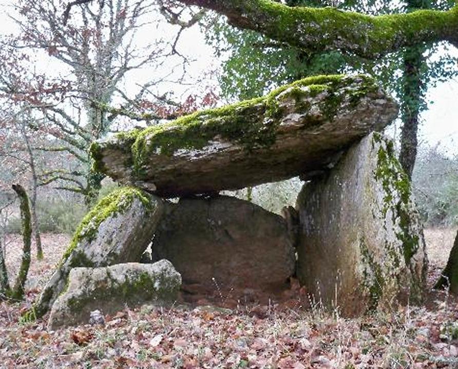 Dolmens & menhirs - Saint-Chels - Dolmen d'Aubin -