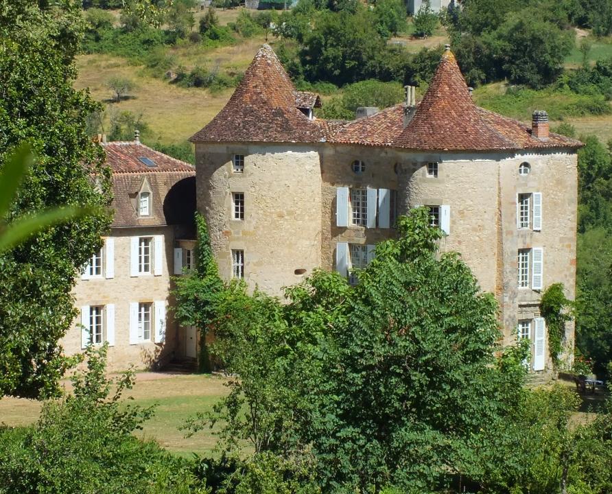 Châteaux & Fortifications - Fons - Château du Roc -