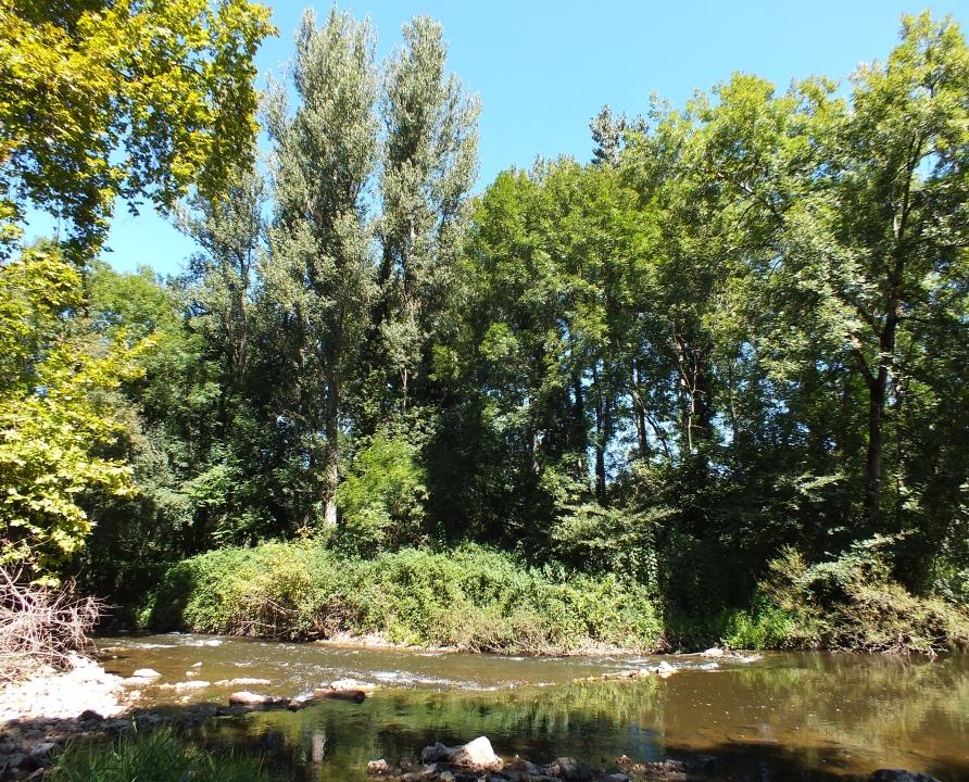 Rivières & Ruisseaux - Corn - Le Célé (Goudou) -