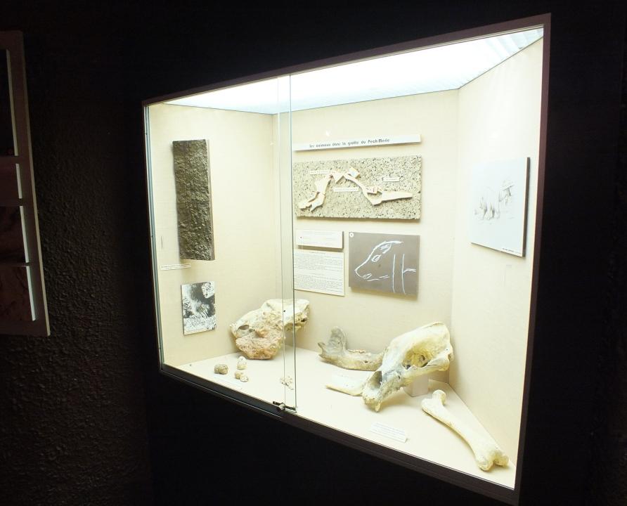 Musées - Cabrerets - Musée de Pech-Merle -
