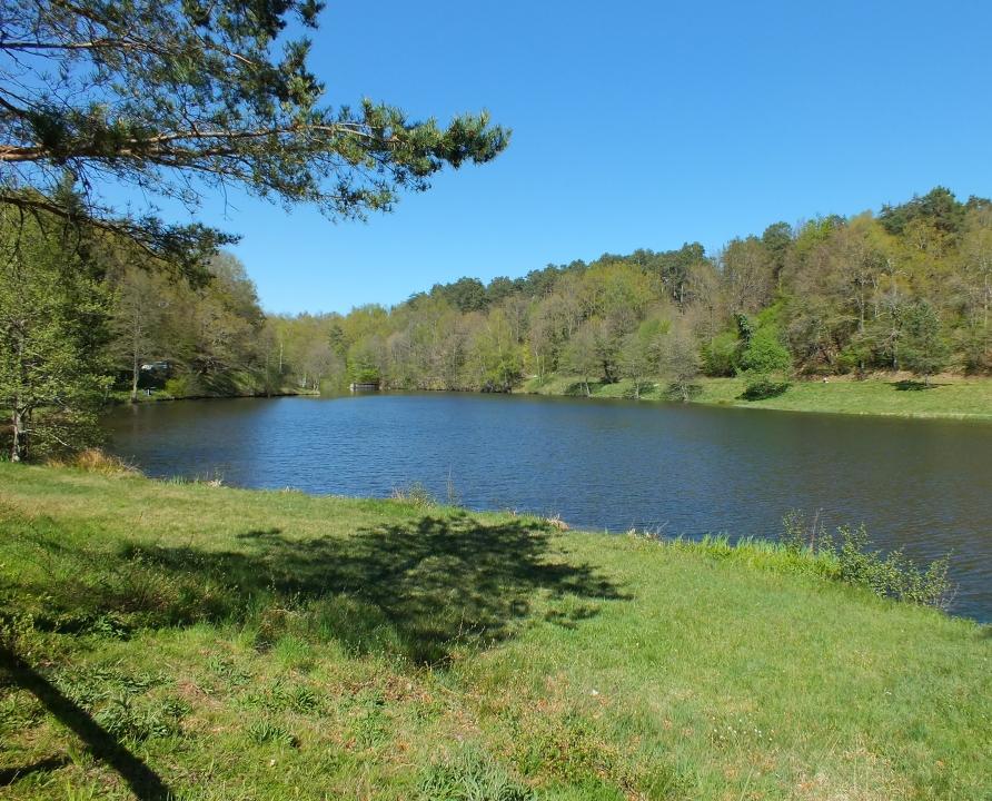Circuits randonnée pédestre - Comiac (Sousceyrac-en-Quercy) - Circuit le Lac des Vergnes - 8km (Lac des Vergnes)