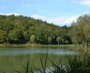 Plan d'eau du moulin bas à Frayssinet-le-Gelat
