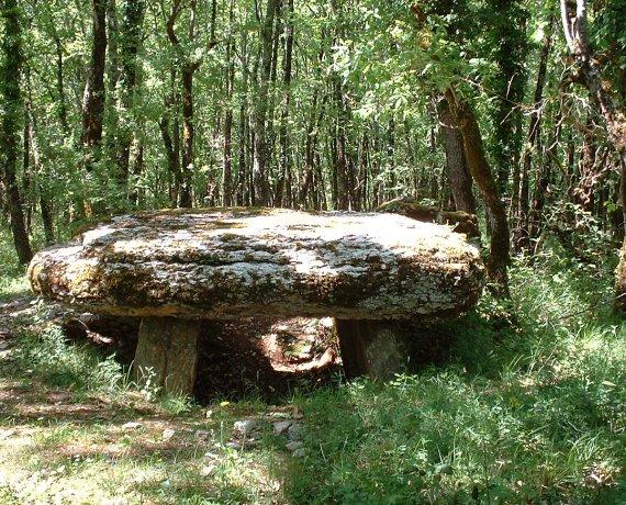 Dolmen de Marcigaliet (ou Borie du Bois 1) à Laramière