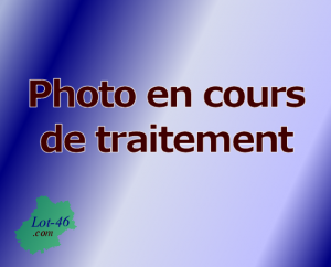 Photo en cours de traitement