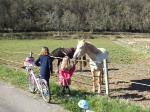 Parcours à vélo pour les petits