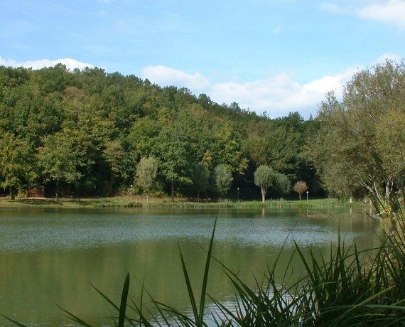 Plan d'eau du moulin bas à Frayssinet-le-Gélat dans le Lot