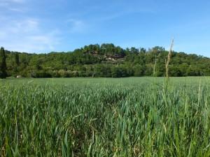 Les campagnes de Faycelles (La rivière)