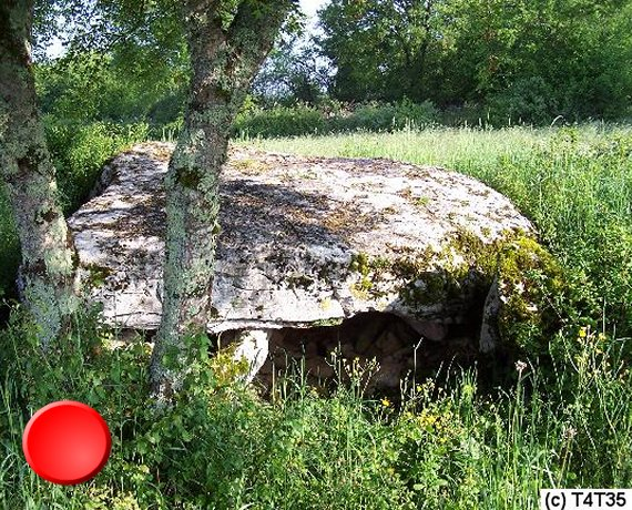 Dolmen de la Pierre Levée à Issendolus dans le Lot