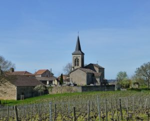 Églises & Abbayes - Albas - Église Saint-Martin (Cénac) - Église Saint-Martin à Albas (Cénac)