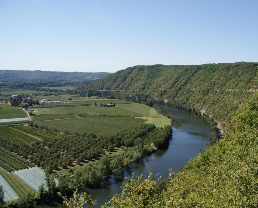 Circuits randonnée pédestre - Caillac - Le circuit Caillac-Calvignac-Crayssac - 15km (Vue sur la vallée du Lot à Crayssac)