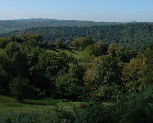 Circuits randonnée pédestre - Prendeignes - Le sentier retrouvé de Prendeignes - 2km (Point de vue à Prendeignes)