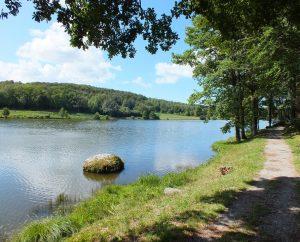 Circuits randonnée pédestre - Sénaillac-Latronquière - Circuit du Lac du Tolerme - 9km (Le lac du Tolerme à Sénaillac-Latronquière)