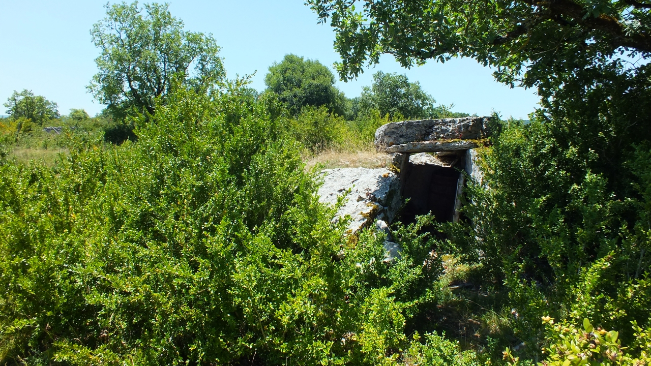 Dolmens & menhirs - Saint-Chels - Dolmen du Mas des Pezet -