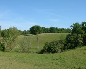 Campagnes - Saillac - Campagnes (bourg) -