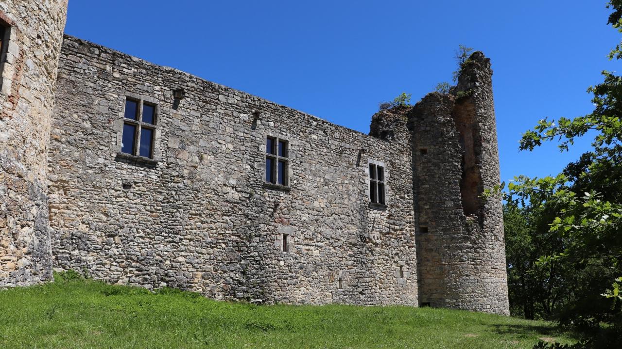 Saint-Pierre-Lafeuille. Le château de Roussillon