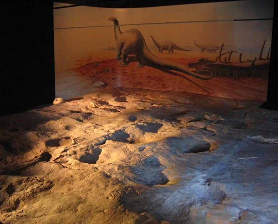 Musées - Luzech - Ichnospace - Ammonites (rue de la ville) -