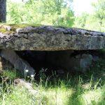 Assier. Le dolmen du Bois des boeufs