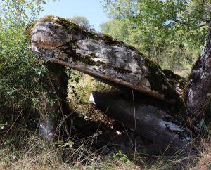Dolmens & menhirs - Issendolus - Dolmen de la Pierre Levée Lacoste -